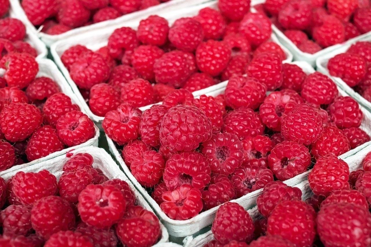 uokon树莓