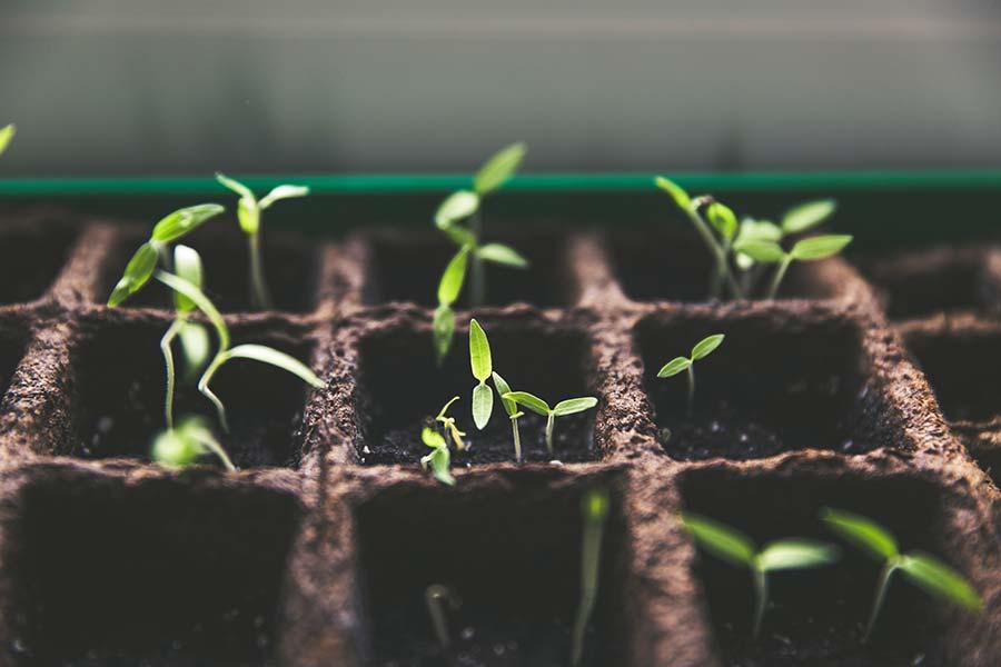 接受这 5 个不舒服的事实,开启新一年的成长
